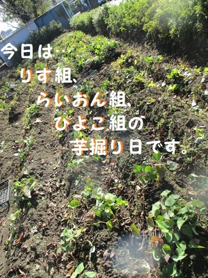 IMG_5601 - コピー.JPG